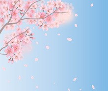 春なのに、春だから➀